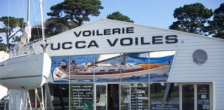 Yucca Voiles
