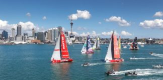 The Ocean race auckland